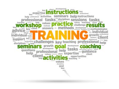 Word cloud of terms related to training